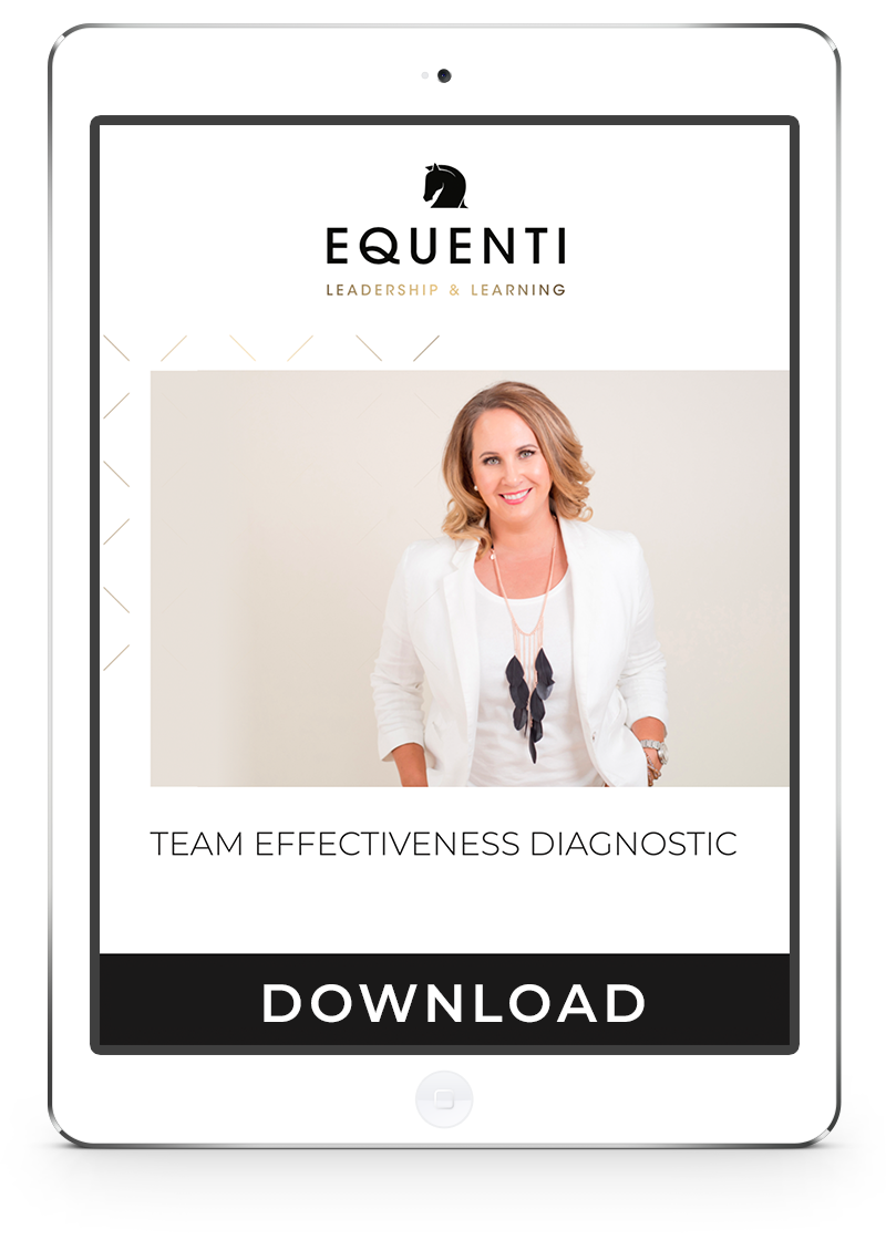 Team Effectiveness Diagnostic